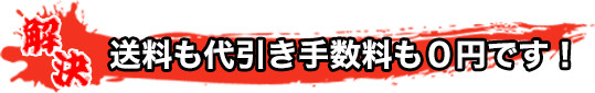送料も代引き手数料も0円です!!